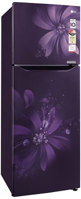 LG 255L 3 Star Frost Free Double Door Refrigerator