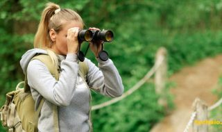 Top 10 Best Binoculars in 2018