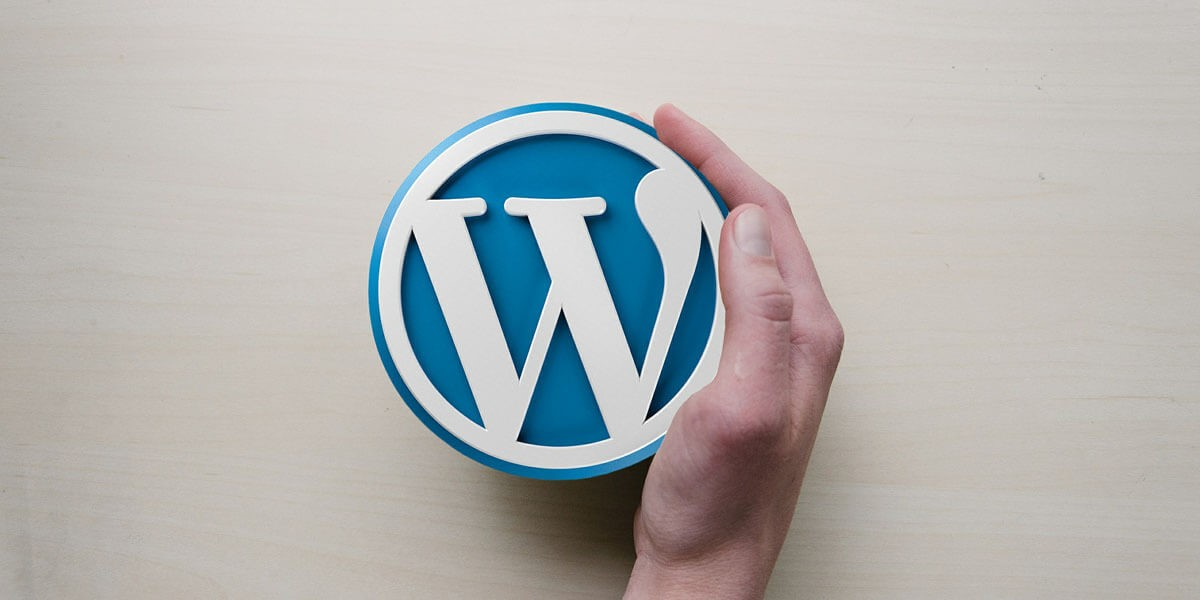 WordPress the best CMS for business website