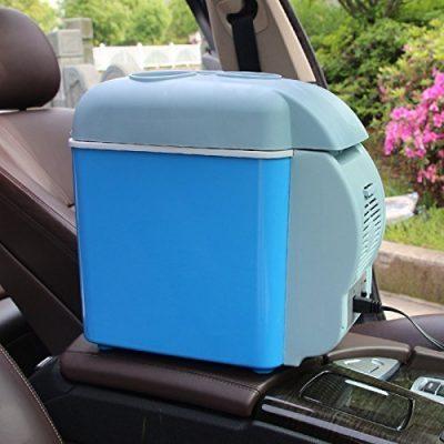 Insale Mini Refrigerator Portable Fridge