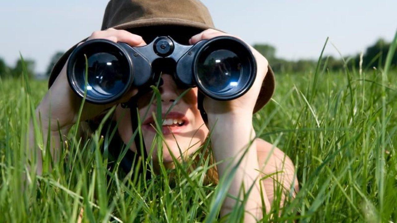 Image result for 10-70x70 Bushnell Binocular